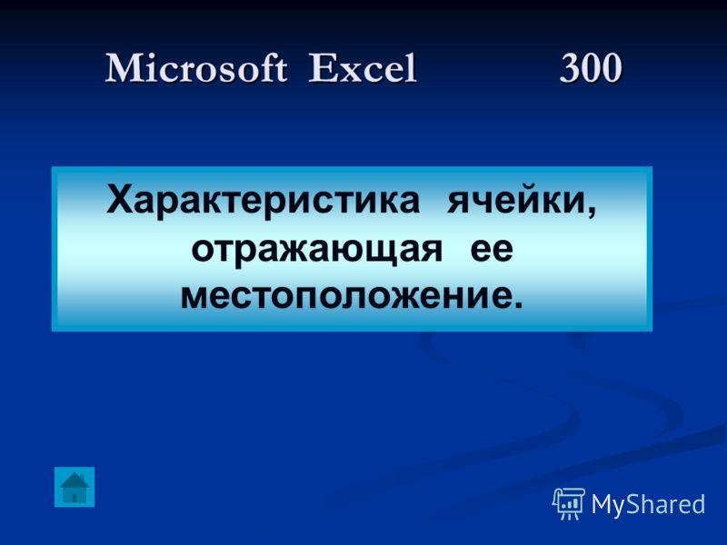 Microsoft Excel 300 Характеристика ячейки, отражающая ее местоположение.