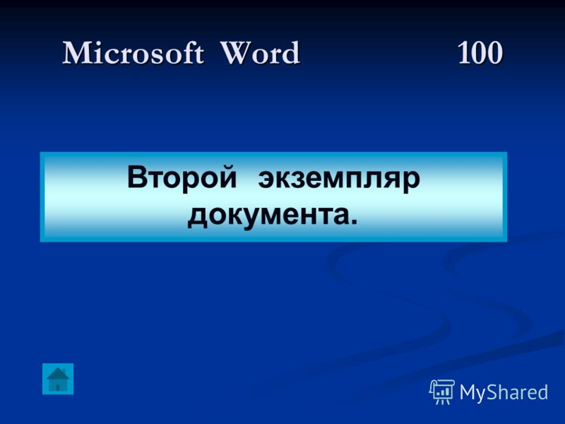 Microsoft Word100 Второй экземпляр документа.