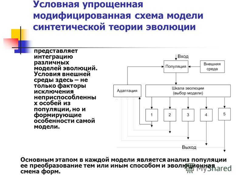 Условная упрощенная модифицированная схема модели синтетической теории эволюции представляет интеграцию различных моделей эволюций. Условия внешней среды здесь – не только факторы исключения неприспособленны х особей из популяции, но и формирующие ос