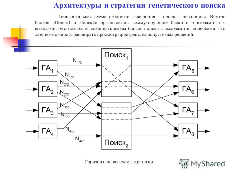 Горизонтальная схема стратегии «эволюция – поиск – эволюция». Внутри блоков «Поиск1 и Поиск2» организованы коммутирующие блоки с n входами и n выходами. Это позволяет соединять входы блоков поиска с выходами n! способами, что дает возможность расширя