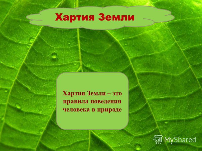 Хартия Земли Хартия Земли – это правила поведения человека в природе