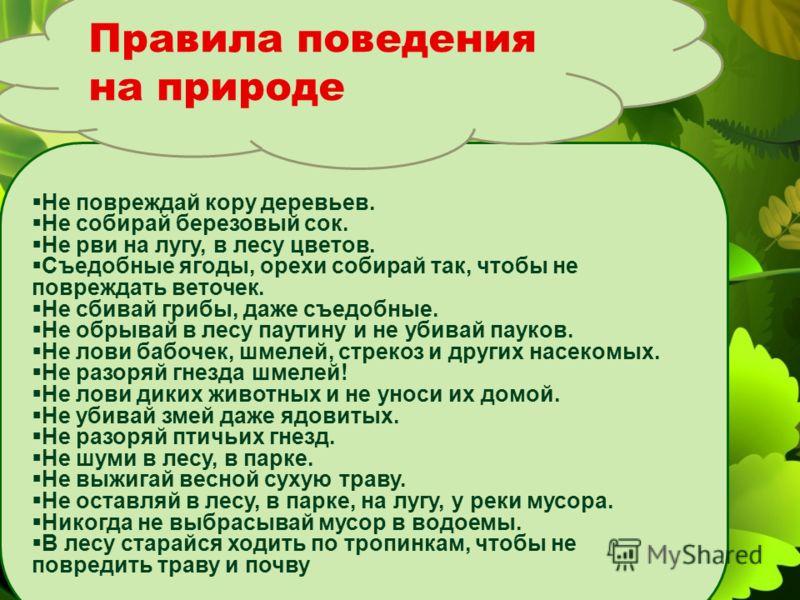 Не повреждай кору деревьев. Не собирай березовый сок. Не рви на лугу, в лесу цветов. Съедобные ягоды, орехи собирай так, чтобы не повреждать веточек. Не сбивай грибы, даже съедобные. Не обрывай в лесу паутину и не убивай пауков. Не лови бабочек, шмел