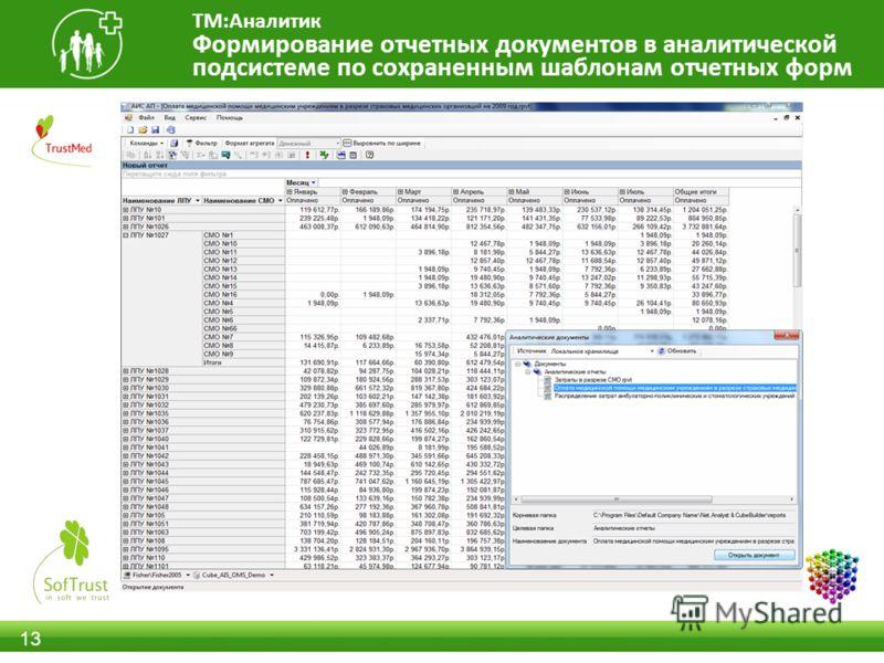 13 Формирование отчетных документов в аналитической подсистеме по сохраненным шаблонам отчетных форм ТМ:Аналитик