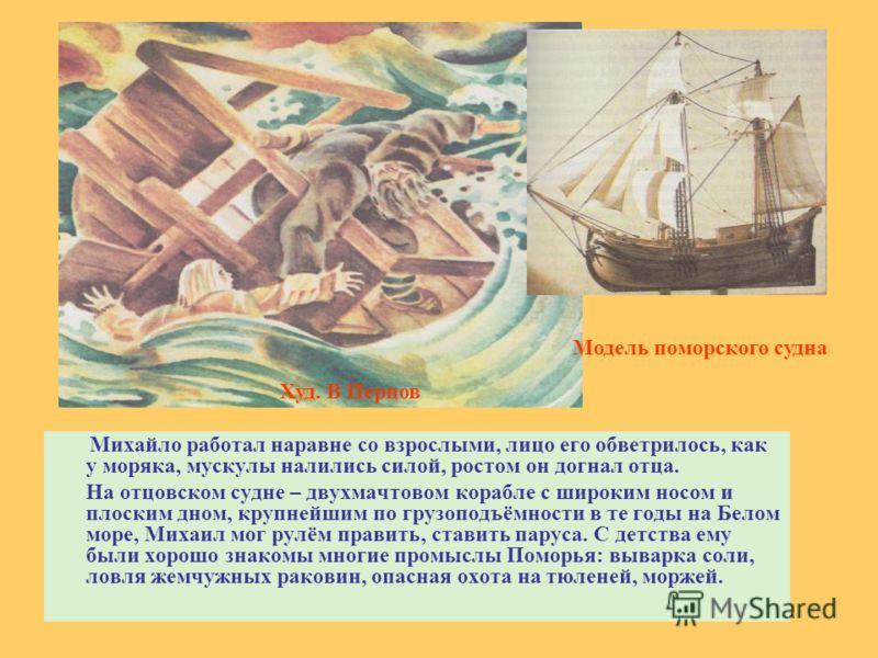 Михайло работал наравне со взрослыми, лицо его обветрилось, как у моряка, мускулы налились силой, ростом он догнал отца. На отцовском судне – двухмачтовом корабле с широким носом и плоским дном, крупнейшим по грузоподъёмности в те годы на Белом море,