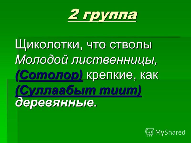 2 группа Щиколотки, что стволы Молодой лиственницы, (Сотолор) крепкие, как (Суллаабыт тиит) деревянные.