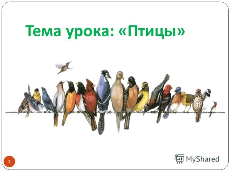 Тема урока : « Птицы » 1