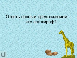 Ответь полным предложением – что ест жираф?