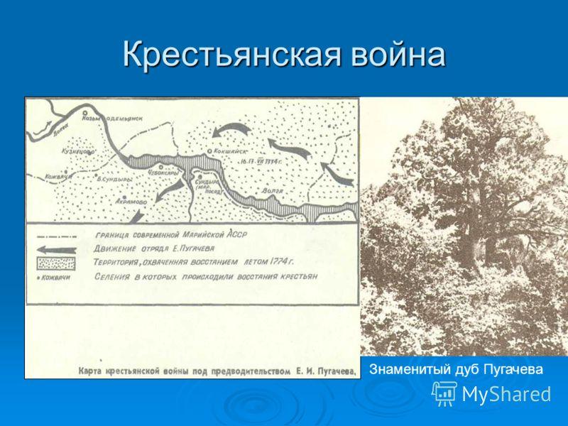 Крестьянская война Знаменитый дуб Пугачева