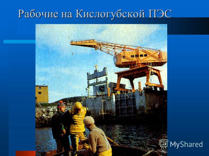 Рабочие на Кислогубской ПЭС