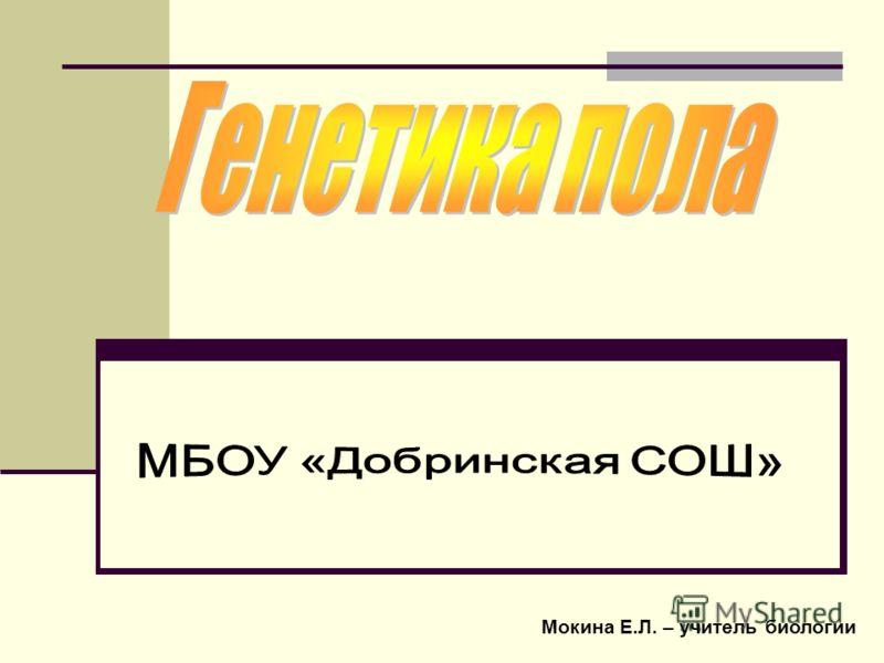 Мокина Е.Л. – учитель биологии