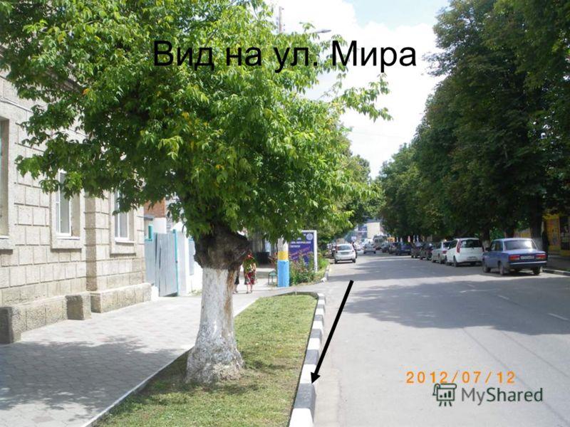 Вид на ул. Мира