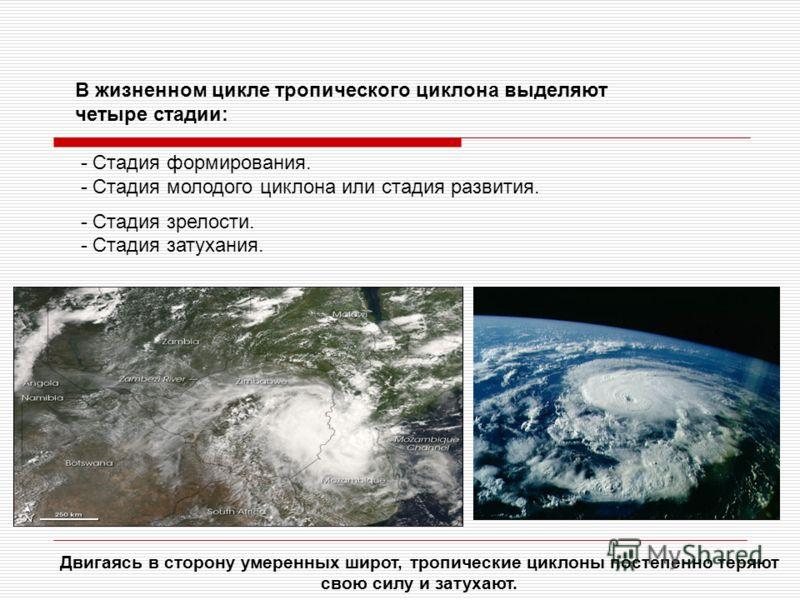 В жизненном цикле тропического циклона выделяют четыре стадии: - Стадия формирования. - Стадия молодого циклона или стадия развития. - Стадия зрелости. - Стадия затухания. Двигаясь в сторону умеренных широт, тропические циклоны постепенно теряют свою