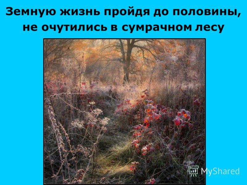 Земную жизнь пройдя до половины, не очутились в сумрачном лесу