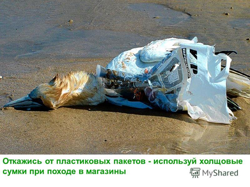 Откажись от пластиковых пакетов - используй холщовые сумки при походе в магазины