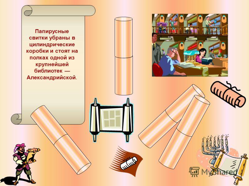 Папирусные свитки убраны в цилиндрические коробки и стоят на полках одной из крупнейшей библиотек Александрийской.