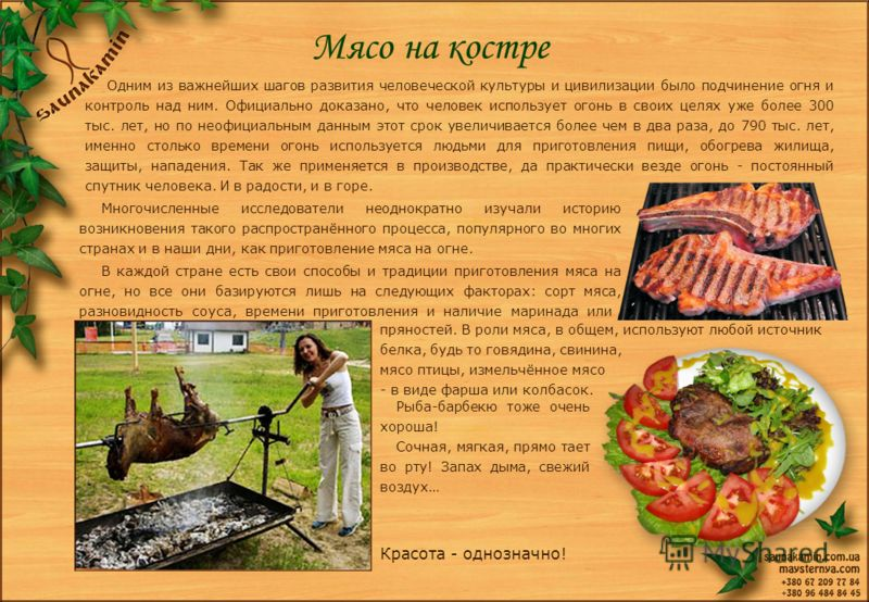 Мясо на костре Одним из важнейших шагов развития человеческой культуры и цивилизации было подчинение огня и контроль над ним. Официально доказано, что человек использует огонь в своих целях уже более 300 тыс. лет, но по неофициальным данным этот срок