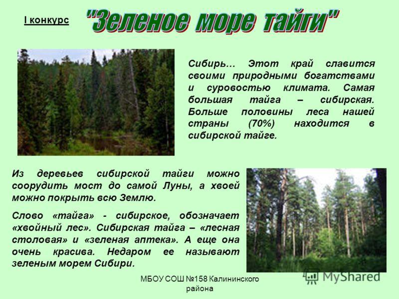 МБОУ СОШ 158 Калининского района I конкурс Сибирь… Этот край славится своими природными богатствами и суровостью климата. Самая большая тайга – сибирская. Больше половины леса нашей страны (70%) находится в сибирской тайге. Из деревьев сибирской тайг