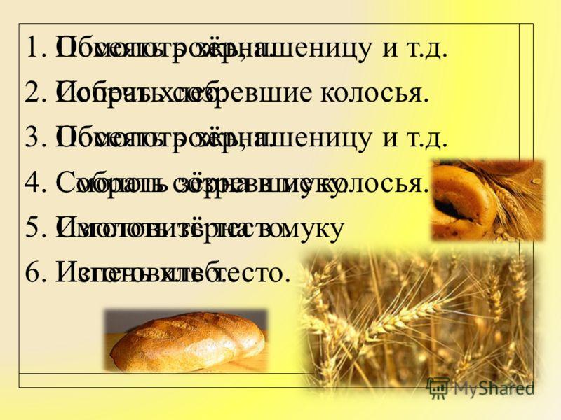 Обмолоть зёрна. Испечь хлеб. Посеять рожь, пшеницу и т.д. Собрать созревшие колосья. Смолоть зёрна в муку Изготовить тесто. 1. Посеять рожь, пшеницу и т.д. 2. Собрать созревшие колосья. 3. Обмолоть зёрна. 4. Смолоть зёрна в муку. 5. Изготовить тесто.