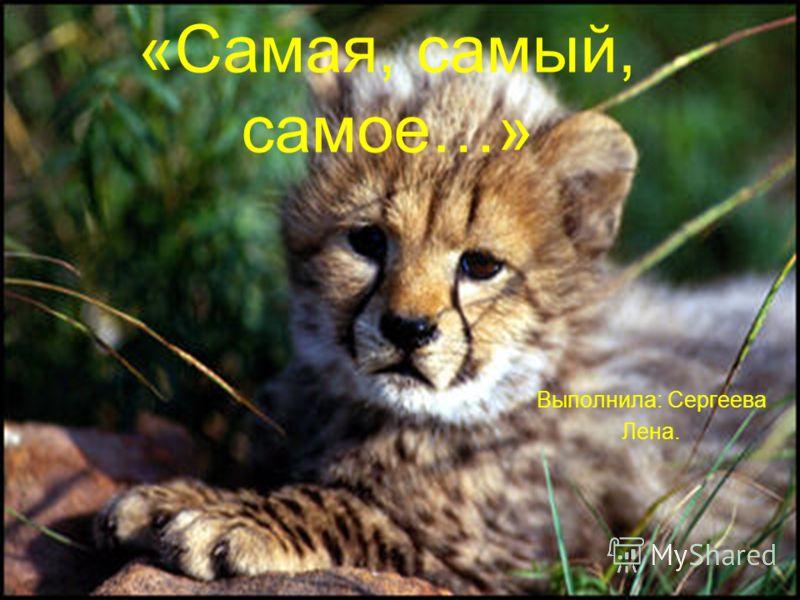 «Самая, самый, самое…» Выполнила: Сергеева Лена.