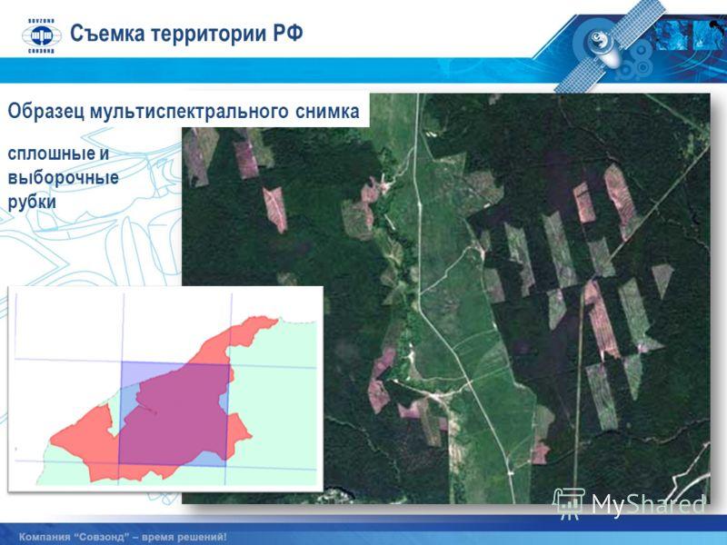 сплошные и выборочные рубки Образец мультиспектрального снимка Съемка территории РФ