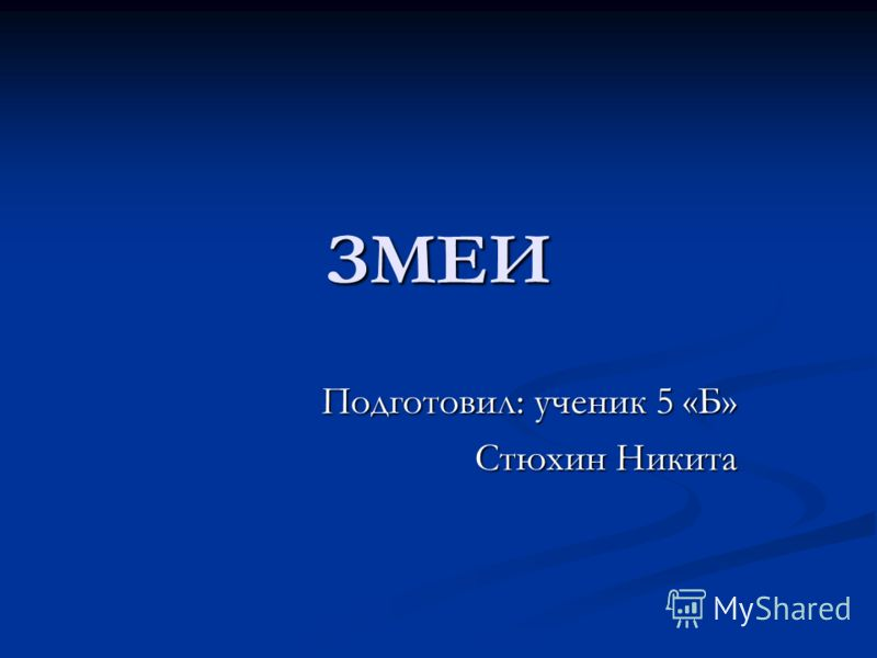 ЗМЕИ Подготовил: ученик 5 «Б» Стюхин Никита