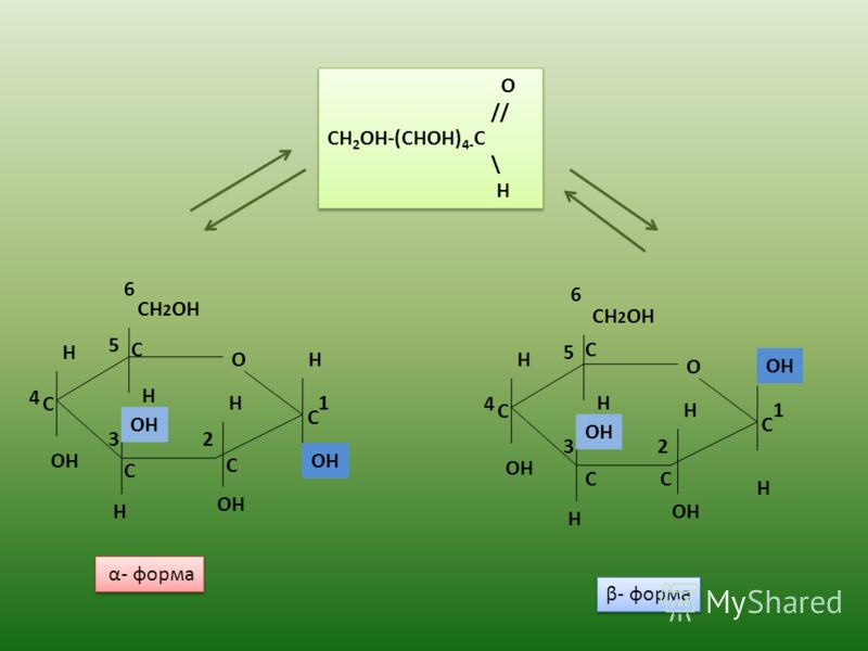 О CH 2 OH OH H H H H H 1 23 5 О CH 2 OH OH H H H H H 1 23 5 6 O // CH 2 OH-(CHOH) 4- C \ H O // CH 2 OH-(CHOH) 4- C \ H 4 4 6 α- форма β- форма С С С С С С СС С С