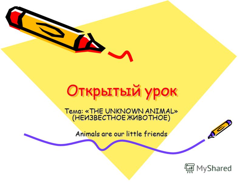 Открытый урок Тема: «THE UNKNOWN ANIMAL» (НЕИЗВЕСТНОЕ ЖИВОТНОЕ) Animals are our little friends