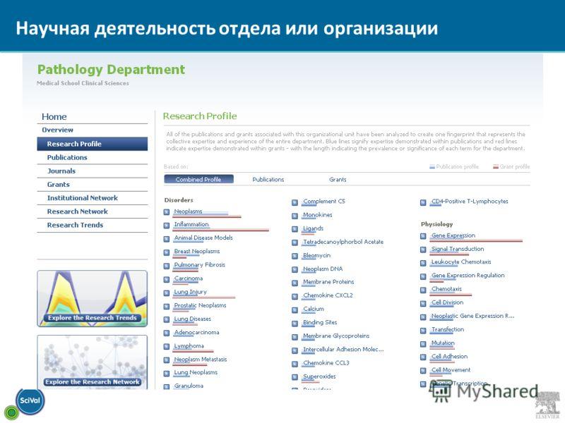 Научная деятельность отдела или организации
