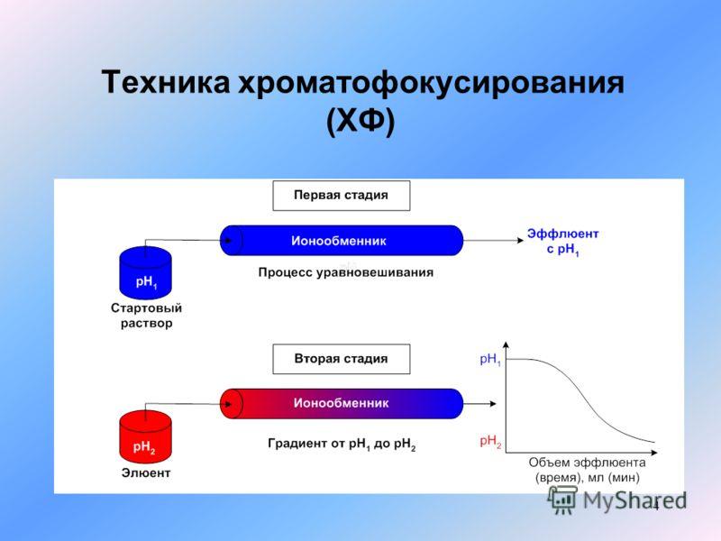 4 Техника хроматофокусирования (ХФ)