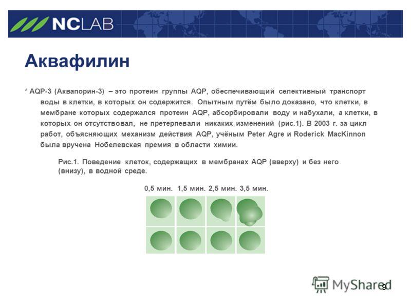 9 Аквафилин * AQP-3 (Аквапорин-3) – это протеин группы AQP, обеспечивающий селективный транспорт воды в клетки, в которых он содержится. Опытным путём было доказано, что клетки, в мембране которых содержался протеин AQP, абсорбировали воду и набухали
