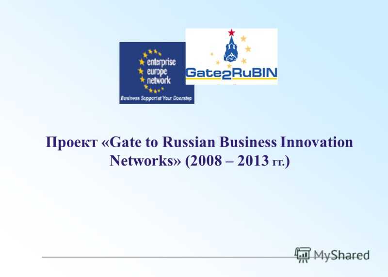 Проект «Gate to Russian Business Innovation Networks» (2008 – 2013 гг. )