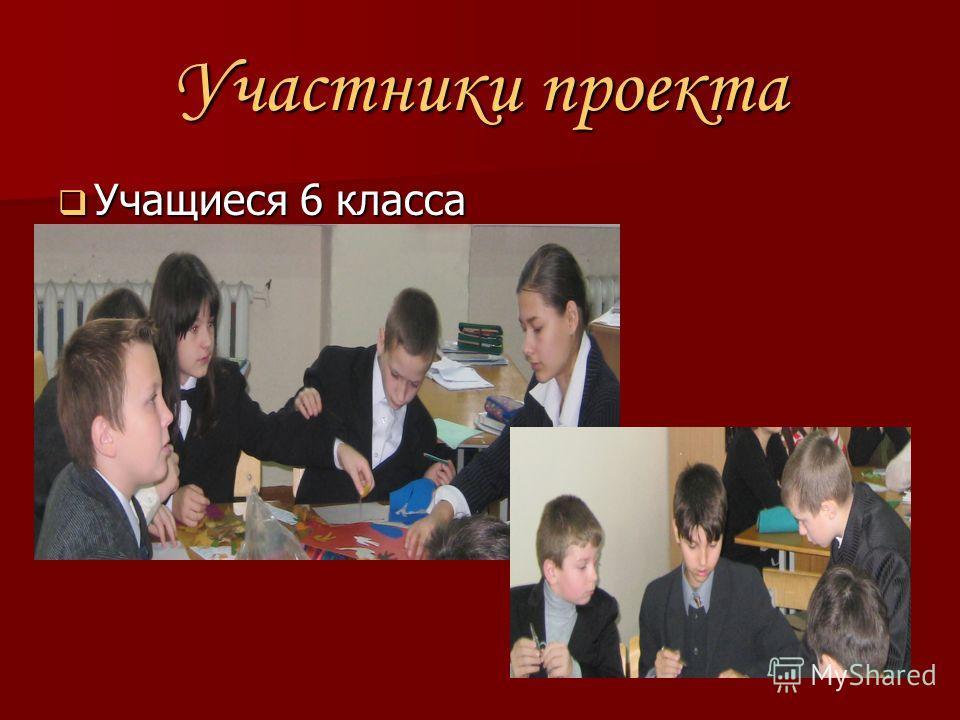 Участники проекта Учащиеся 6 класса Учащиеся 6 класса