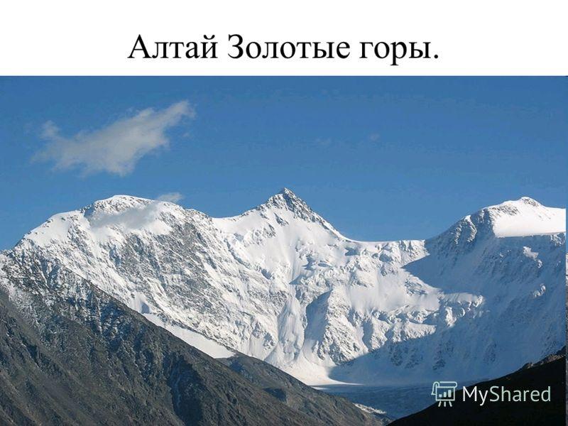 Алтай Золотые горы.
