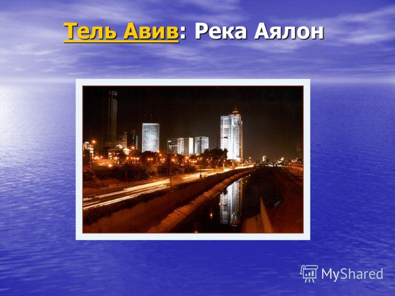 Тель АвивТель Авив: Река Аялон Тель Авив