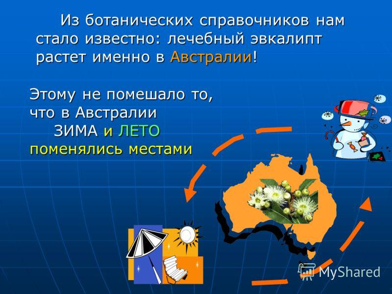 Из ботанических справочников нам стало известно: лечебный эвкалипт растет именно в Австралии! Этому не помешало то, что в Австралии ЗИМА и ЛЕТО поменялись местами