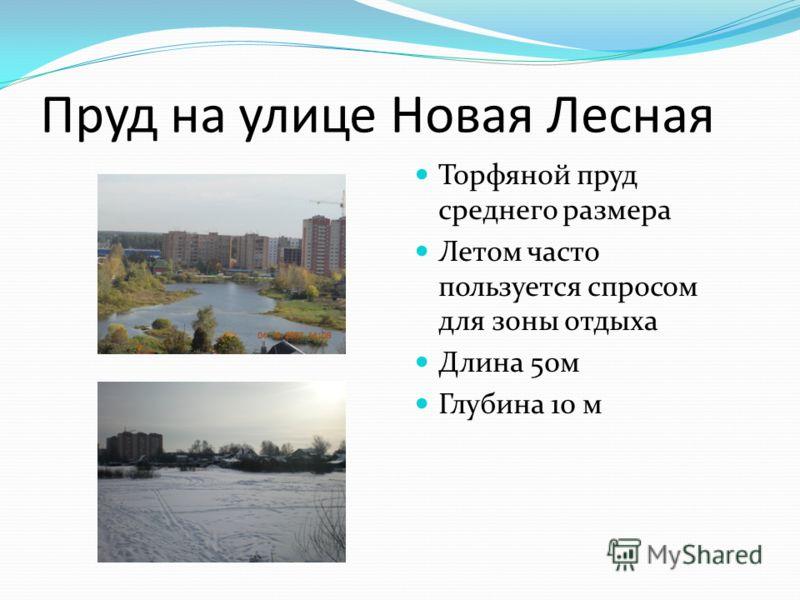 Пруд на улице Новая Лесная Торфяной пруд среднего размера Летом часто пользуется спросом для зоны отдыха Длина 50м Глубина 10 м