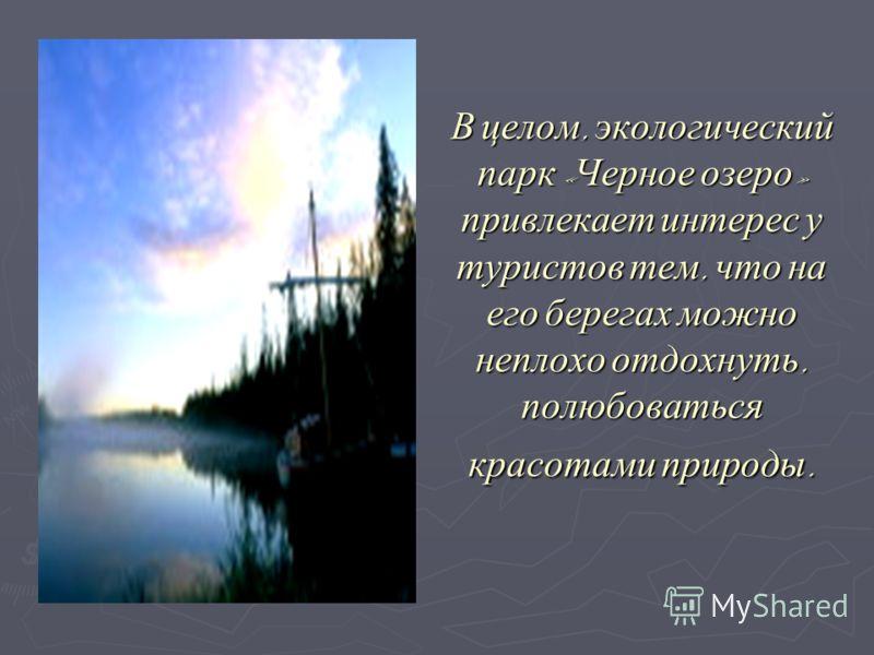 В целом, экологический парк «Черное озеро» привлекает интерес у туристов тем, что на его берегах можно неплохо отдохнуть, полюбоваться красотами природы.