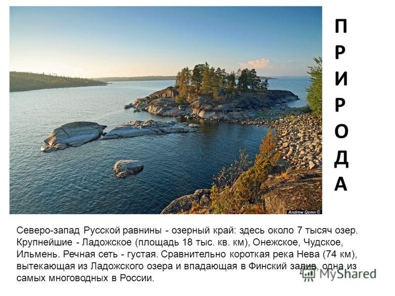 ПРИРОДАПРИРОДА Северо-запад Русской равнины - озерный край: здесь около 7 тысяч озер. Крупнейшие - Ладожское (площадь 18 тыс. кв. км), Онежское, Чудское, Ильмень. Речная сеть - густая. Сравнительно короткая река Нева (74 км), вытекающая из Ладожского