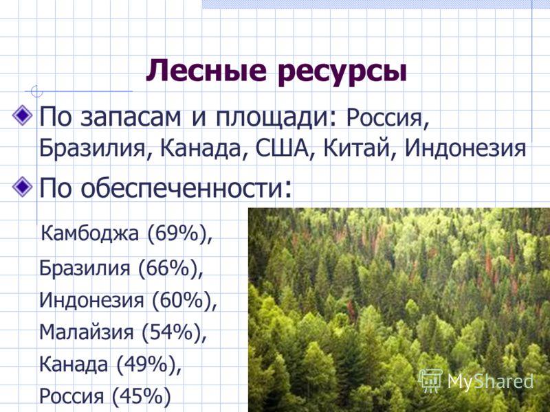 Лесные ресурсы По запасам и площади: Россия, Бразилия, Канада, США, Китай, Индонезия По обеспеченности : Камбоджа (69%), Бразилия (66%), Индонезия (60%), Малайзия (54%), Канада (49%), Россия (45%)