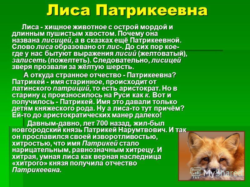 Лиса Патрикеевна Лиса - хищное животное с острой мордой и длинным пушистым хвостом. Почему она названа лисицей, а в сказках ещё Патрикеевной. Слово лиса образовано от лис-. До сих пор кое- где у нас бытуют выражения лисий (желтоватый), залисеть (поже