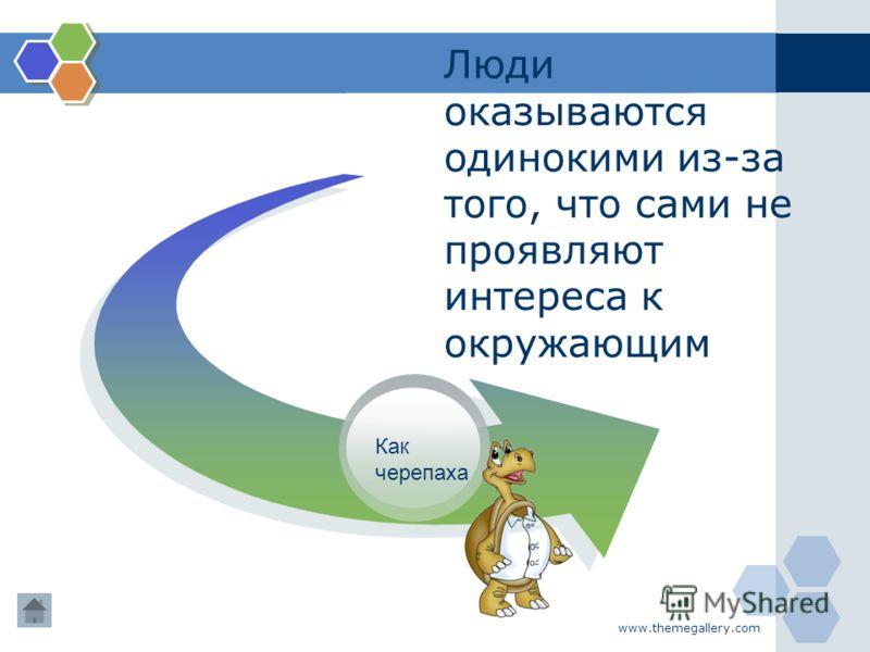 www.themegallery.com Люди оказываются одинокими из-за того, что сами не проявляют интереса к окружающим Как черепаха