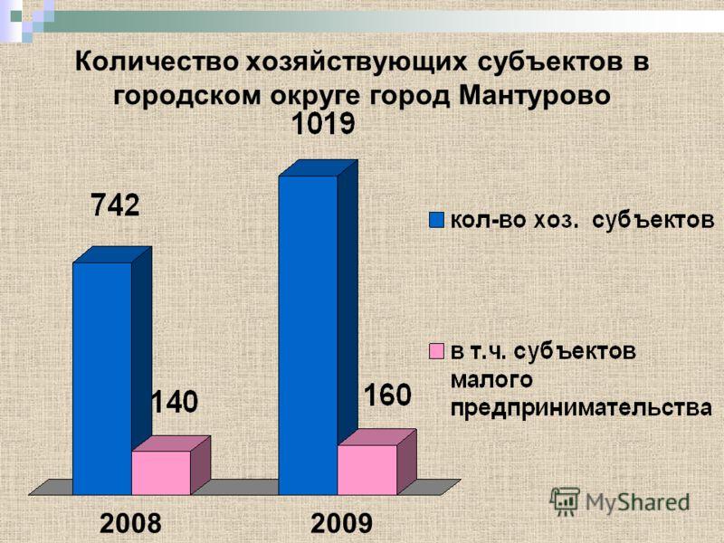 Количество хозяйствующих субъектов в городском округе город Мантурово 20082009