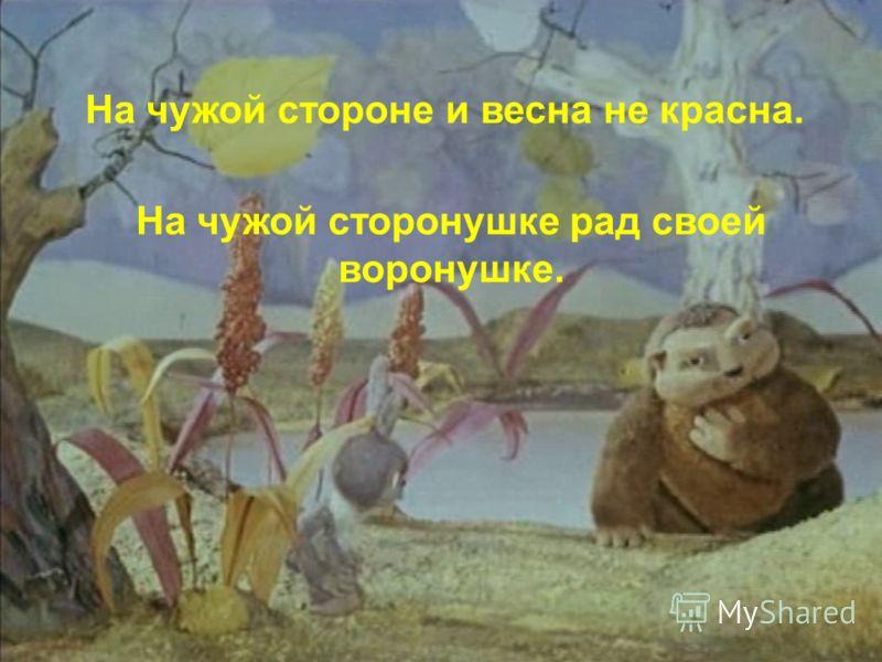 На чужой стороне и весна не красна. На чужой сторонушке рад своей воронушке.
