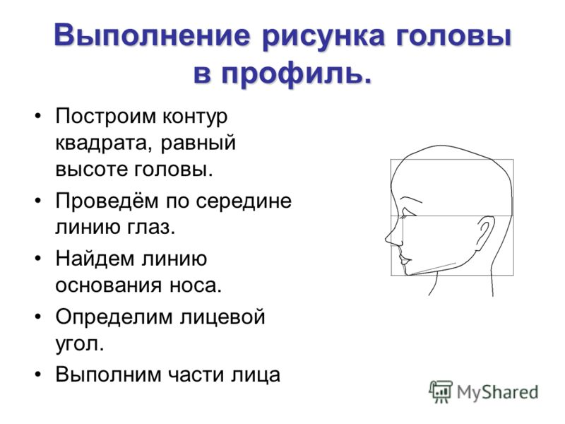 Выполнение рисунка головы в профиль. Построим контур квадрата, равный высоте головы. Проведём по середине линию глаз. Найдем линию основания носа. Определим лицевой угол. Выполним части лица