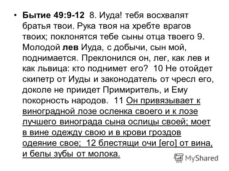 Бытие 49:9-12 8. Иуда! тебя восхвалят братья твои. Рука твоя на хребте врагов твоих; поклонятся тебе сыны отца твоего 9. Молодой лев Иуда, с добычи, сын мой, поднимается. Преклонился он, лег, как лев и как львица: кто поднимет его? 10 Не отойдет скип