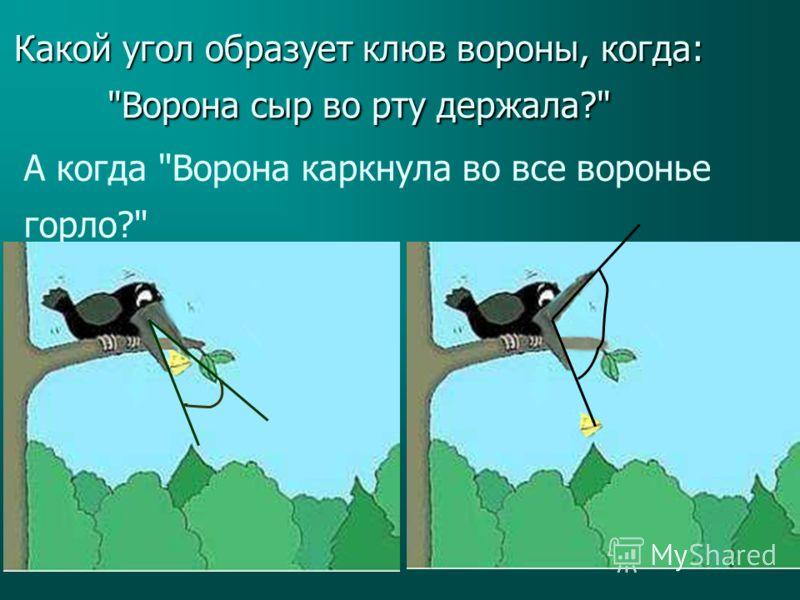 Какой угол образует клюв вороны, когда: Ворона сыр во рту держала? А когда Ворона каркнула во все воронье горло?