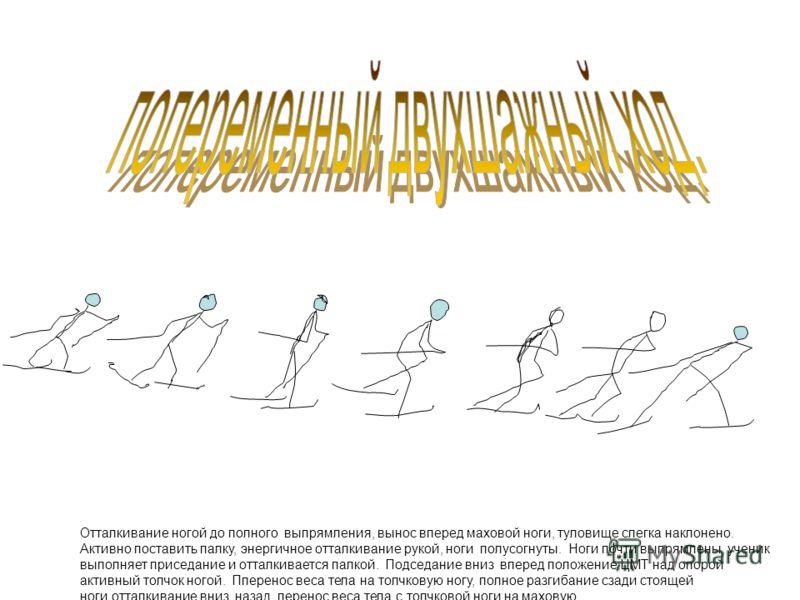Отталкивание ногой до полного выпрямления, вынос вперед маховой ноги, туловище слегка наклонено. Активно поставить палку, энергичное отталкивание рукой, ноги полусогнуты. Ноги почти выпрямлены, ученик выполняет приседание и отталкивается палкой. Подс