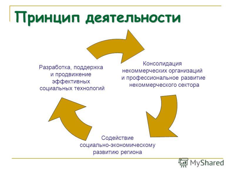 Принцип деятельности Консолидация некоммерческих организаций и профессиональное развитие некоммерческого сектора Содействие социально- экономическому развитию региона Разработка, поддержка и продвижение эффективных социальных технологий