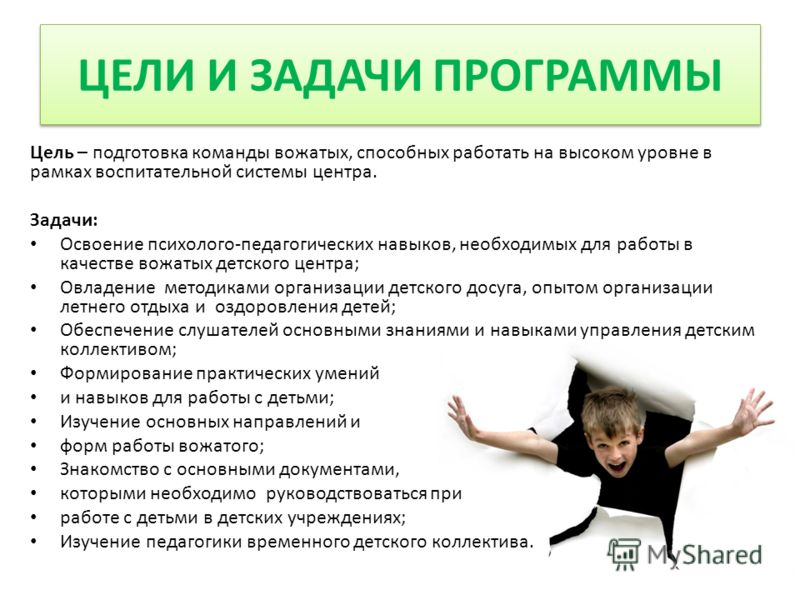 ЦЕЛИ И ЗАДАЧИ ПРОГРАММЫ Цель – подготовка команды вожатых, способных работать на высоком уровне в рамках воспитательной системы центра. Задачи: Освоение психолого-педагогических навыков, необходимых для работы в качестве вожатых детского центра; Овла
