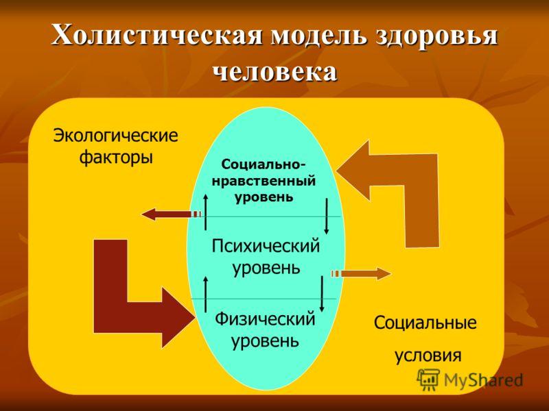 Холистическая модель здоровья человека Социально- нравственный уровень Психический уровень Физический уровень Социальные условия Экологические факторы